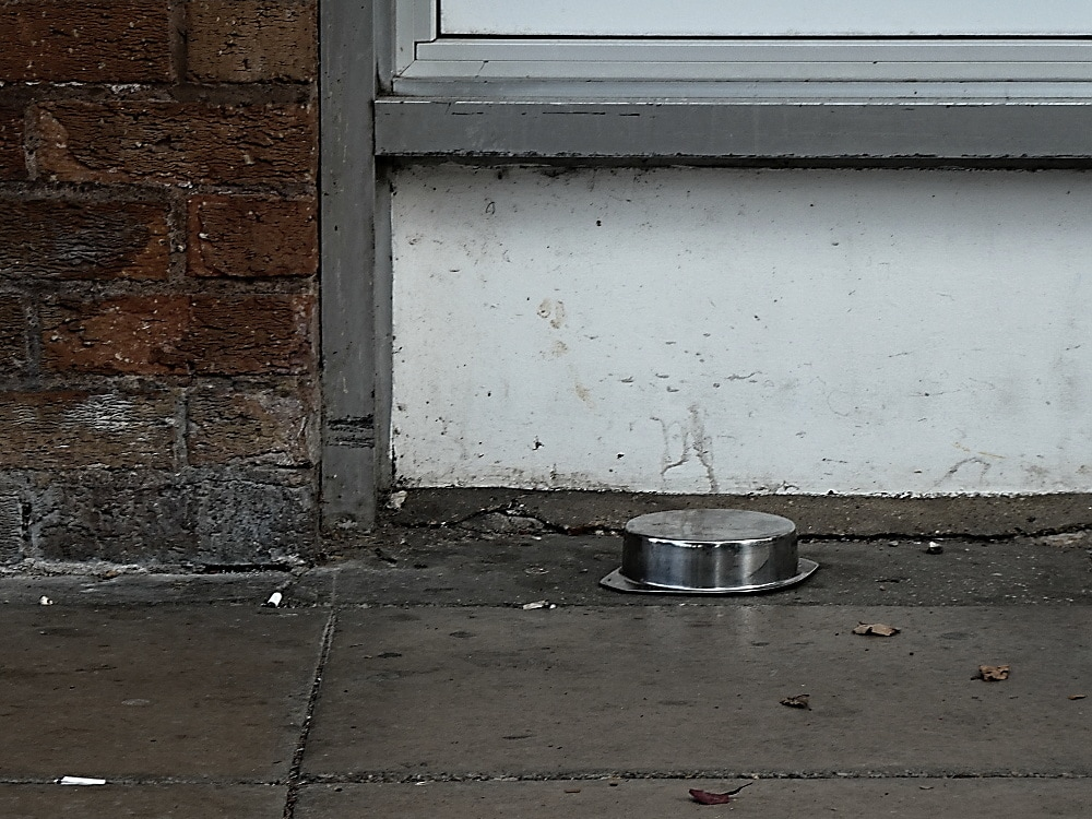 An upturned dog's water bowl